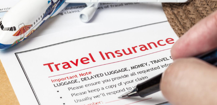 Image showing a person point out a point in a travel insurance papers.